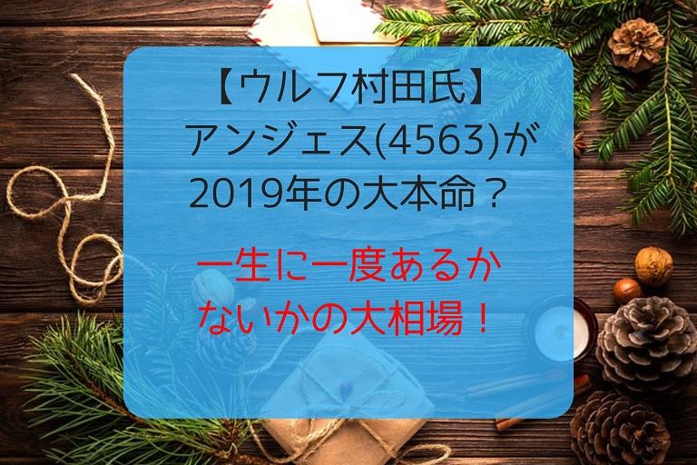 ウルフ村田氏 アンジェス(4563)が2019年の大本命?株価はどこまで上がる?